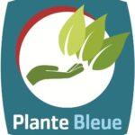 plante_bleue