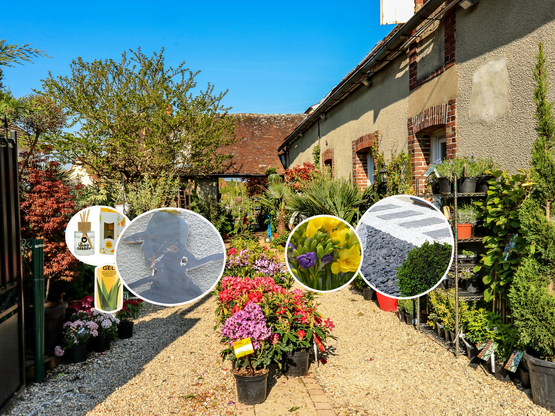 jardinerie fan d plantes thivars